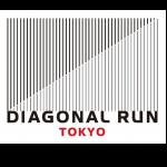 daiagonal-03